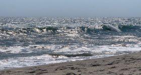 Miacomet Beach Summer Days