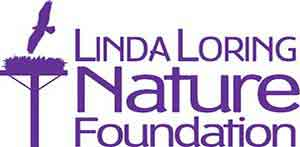 Linda Loring Logo
