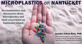 Microplastics on Nantucket