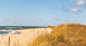 nantucket_beach